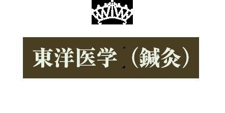 東洋医学(鍼灸)